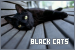 Cats: Black: